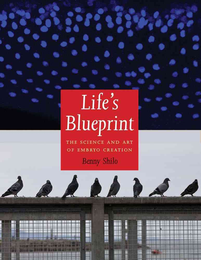Life's Blueprint By Shilo, Benny